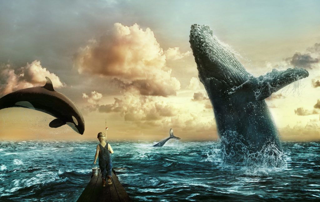 Who are the Crypto Whales?